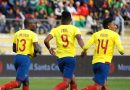 Técnico de la selección será elegido tras el Mundial
